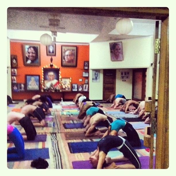 atelier autour de la série intermédiaire de l'ashtanga yoga
