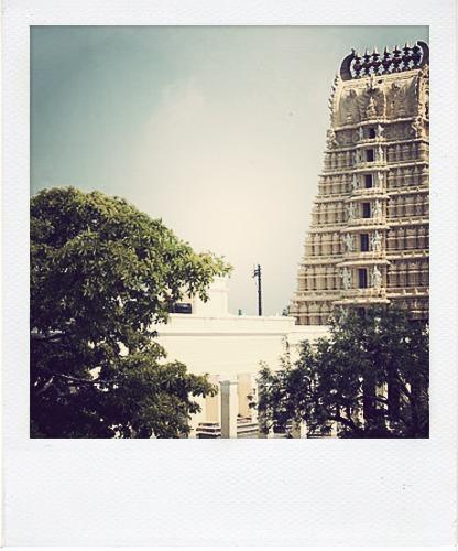 pola Mysore 3